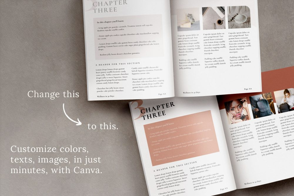 Suki - an eBook or lead magnet Canva Template